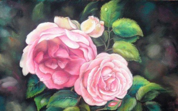 ~ La vie est une rose dont chaque pétale est une illusion et chaque épine une réalité ~ Alfred De Musset.