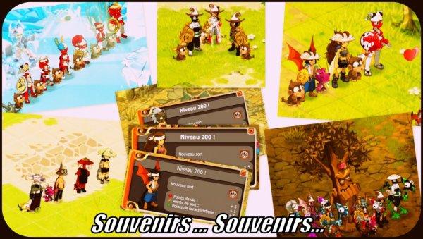 Souvenirs... Souvenirs...