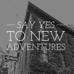 FICHE LECTURE : Un roman d'aventures (ou presque !)