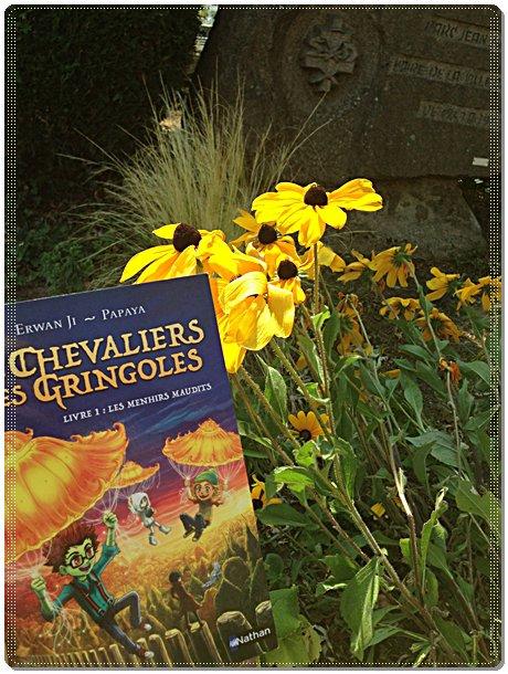 FICHE LECTURE : Les Chevaliers des Gringoles - Livre 1 : Les menhirs maudits