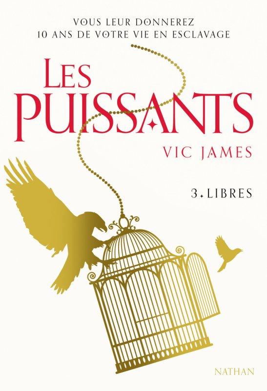 FICHE LECTURE : Les Puissants - T3 : Libres