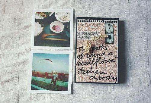 In My Mailbox : semaine du 25/11/19