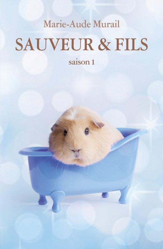 FICHE LECTURE : Sauveur & fils - Saison 1
