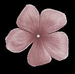 kit   tuto demoiselle fleur