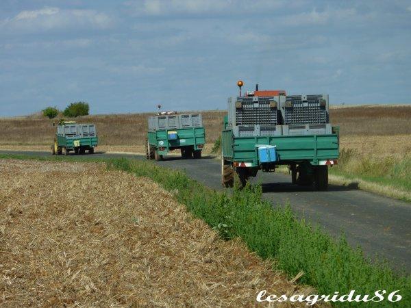 transport de melons