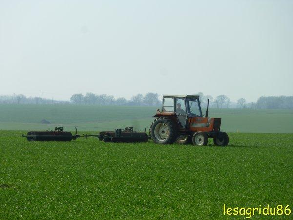 roulage sur blé 2011