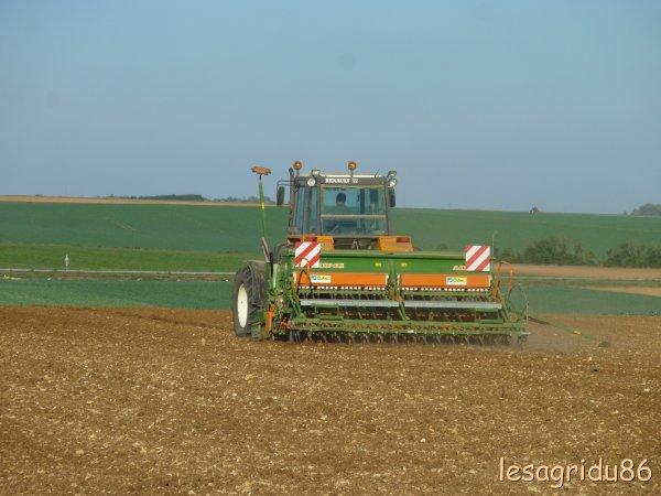 semis d'escourgeon 2011 avec un renault