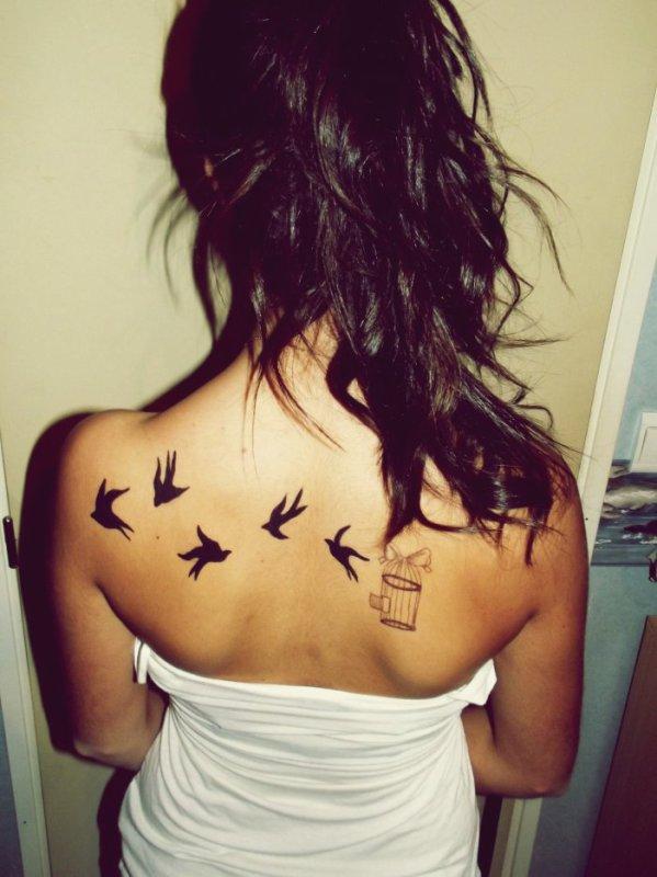 Qui n'a pas d'imagination n'a pas d'ailes.