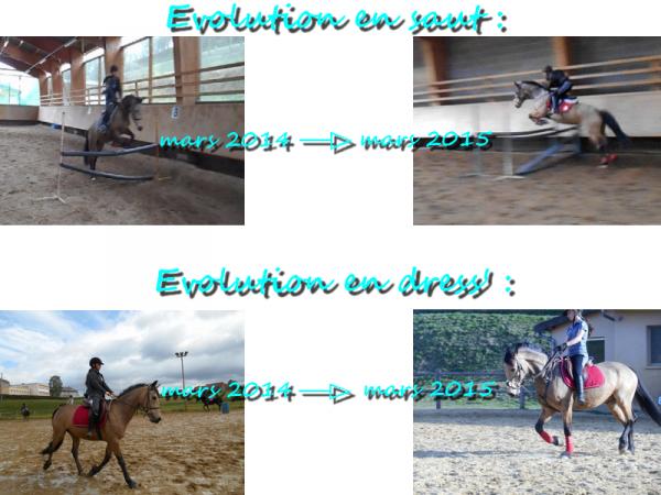 → ♥ Le 22 mars 2014 → Le 22 mars 2015 ♥ ←