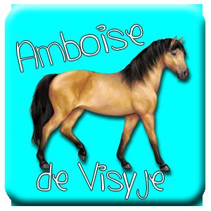 Amboise depuis le 22 mars 2014, et pas prêt de se terminer ♥