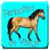 Amboise-De-Visyje