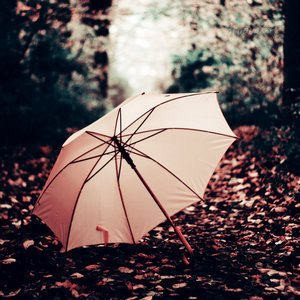 x-rain-of-words ☂