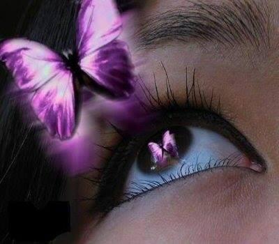 Le bonheur en silence ~ Le vol du papillon
