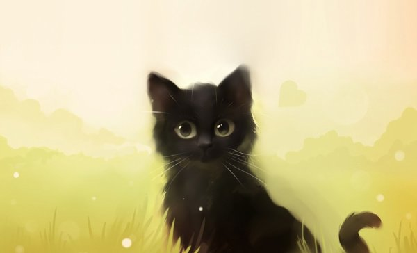 Le v½ux du chat noir