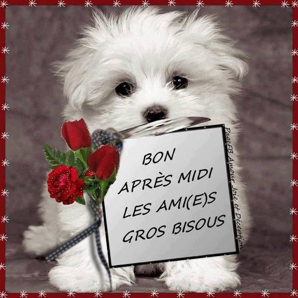 Aller hope Bisous a tous et toutes!!!