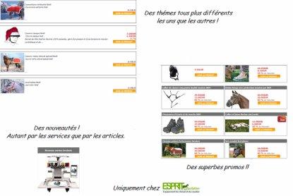 ! ! ! Esprit Equitation ! ! !
