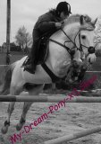 Photo de My-Dream-Pony-x3