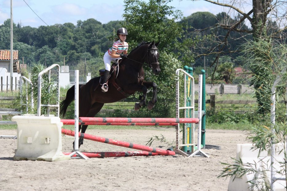 La vie au centre equestre des 3 vallées