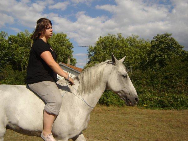 bailador le cheval le plu genial et Donckey la meilleure jument !!
