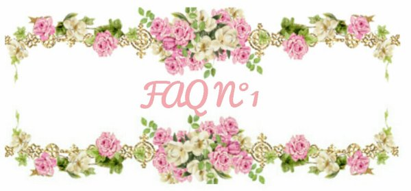 F A Q n°1 - ouvert