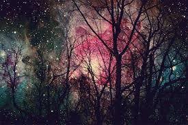 Lever les yeux vers le ciel nocturne, c'est plonger son regard vers l'infini - ses dimensions en sont incompréhensibles et par conséquent sans signification.