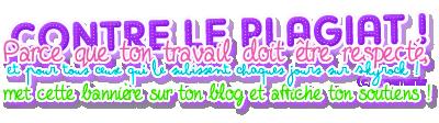 Présentation de mon Blog et des Fictions