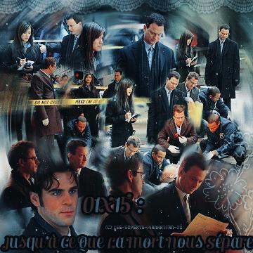 ~ CSI : NY ♥ 01x15 - 01x16 Créations - Décorations