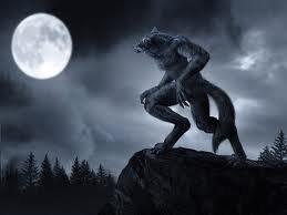 Chapitre sept: Passer une nuit de Pleine Lune avec 2 meutes de loups-garous.