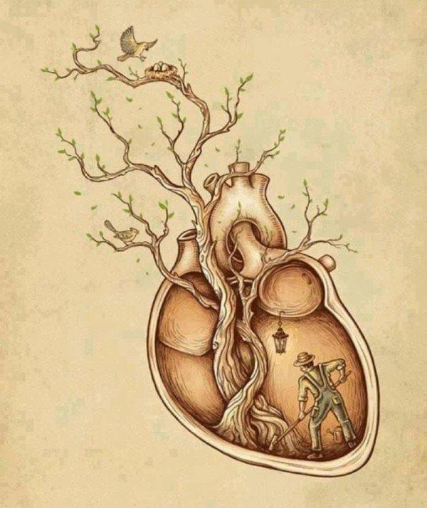 """""""Suis toujours ton coeur, mais prends ton cerveau avec toi"""""""