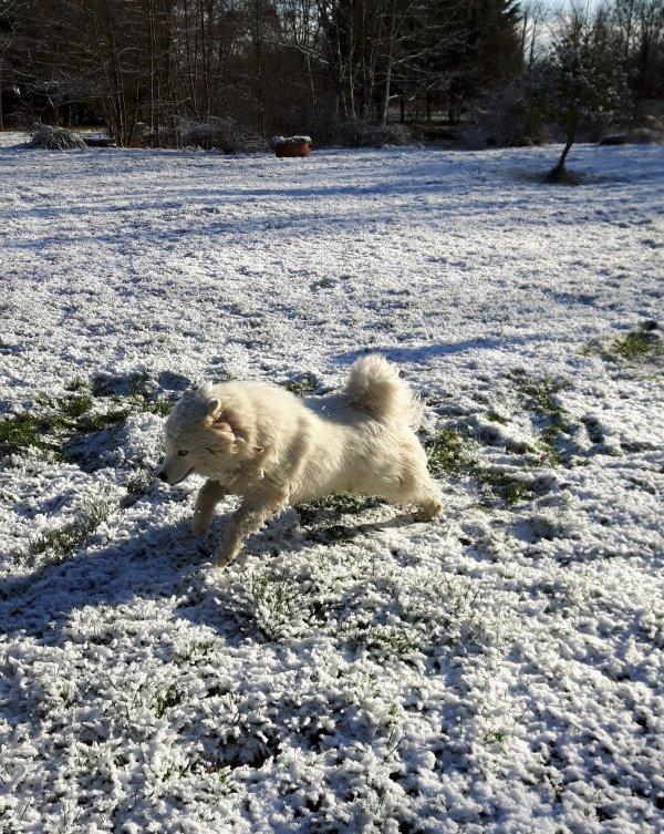 Ah la neige