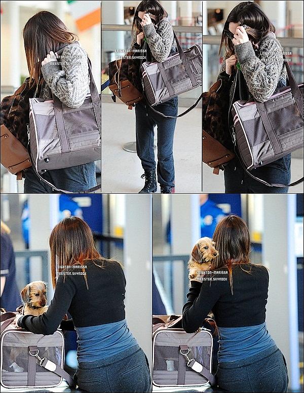 _      25/01/11  .__ Lei' et son adoooorable nouveau petit chiot se préparent à embarquer à l'aéroport de LAX.   29/01/11  .__ Leighton M. nous présentant sa joooolie capuche à la sortie de l'aeroport de Los Angeles.  _