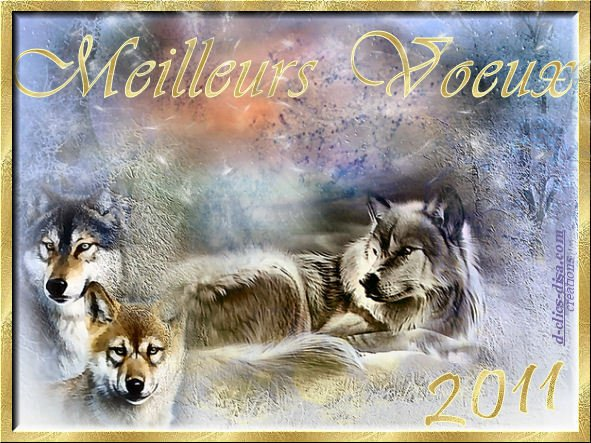 tous mes voeux pour cette année 2011