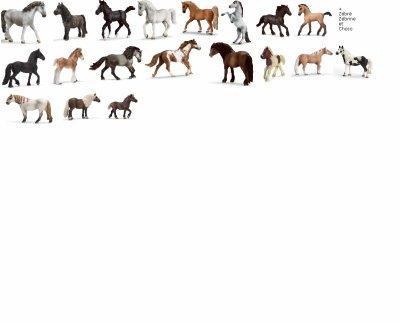 5/ Fiche présentation chevaux