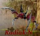 Photo de Radiak-N