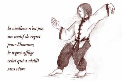 Blog de kshaolinquan kung fu shaolin quan gymnastique for Les arts martiaux chinois