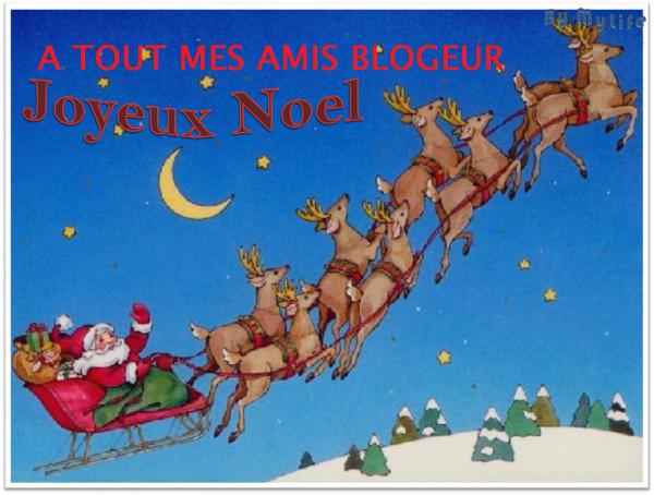 JOYEUX NOEL A TOUT MES AMIS BLOGUEUR ET BON ELEVAGE 2015