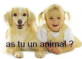 as-tu un animal ?