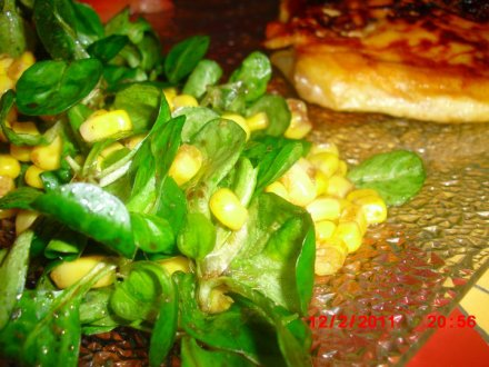 Brik Et Sa Salade