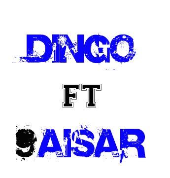 9aisar ft dingo