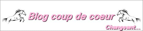 Blog coup de c½ur... ♥