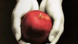 Les Livres Twilight P: 28/02/10