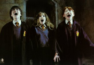 Harry Potter P: 14/07/11