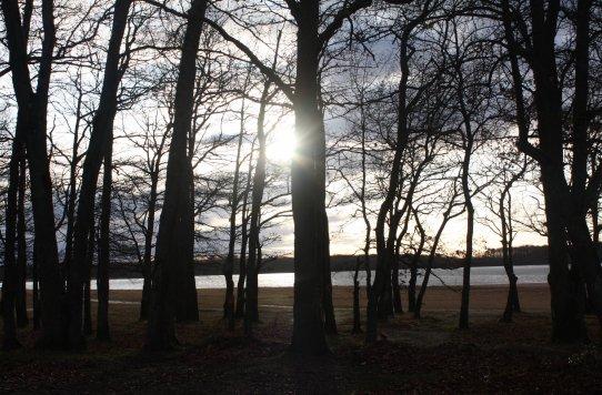 Coucher de soleil sur l'étang de la Grande Rue
