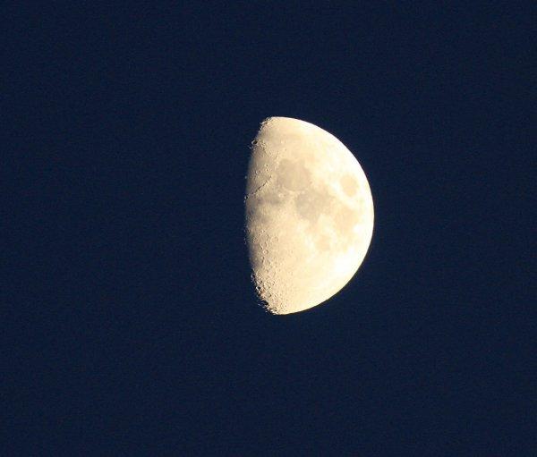 Bonsoir Demi-Lune
