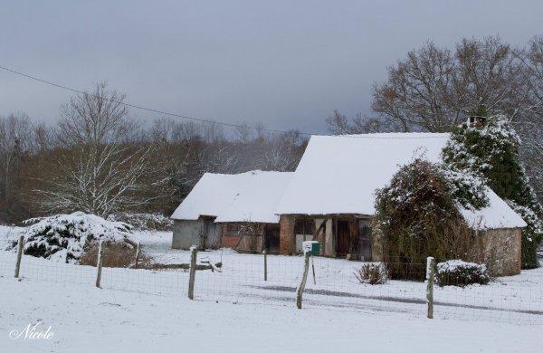 Ce matin sous la neige...
