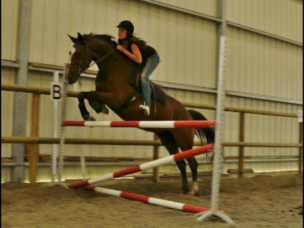 Équitation <3