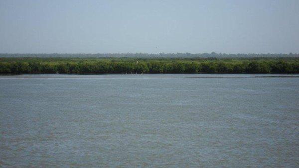 fleuve de ziguinchor