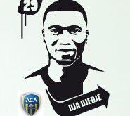 Dja Djédjé N°29