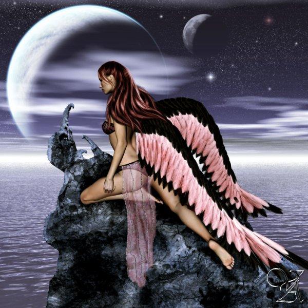 Fées accroupi avec les ailes rose noire