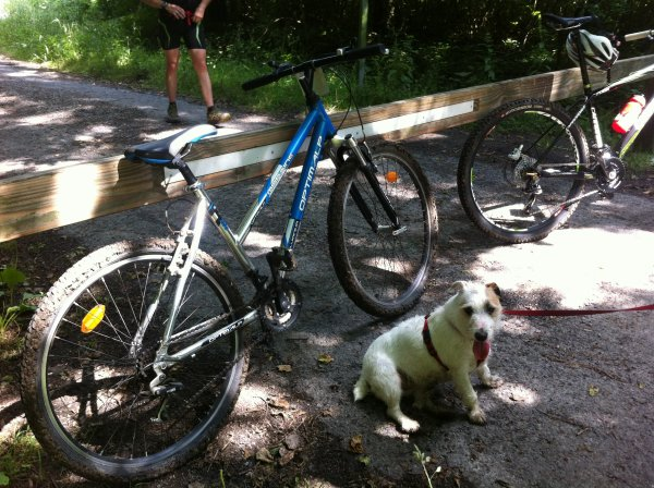 Un nouveau run/bike and dog & VTT orageux à Lillers